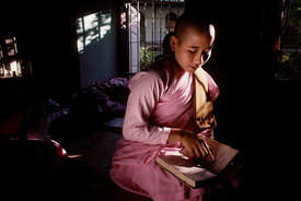 Novice Burmese nun studying