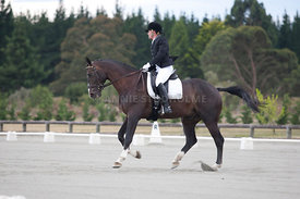 SI_Dressage_Champs_260114_034