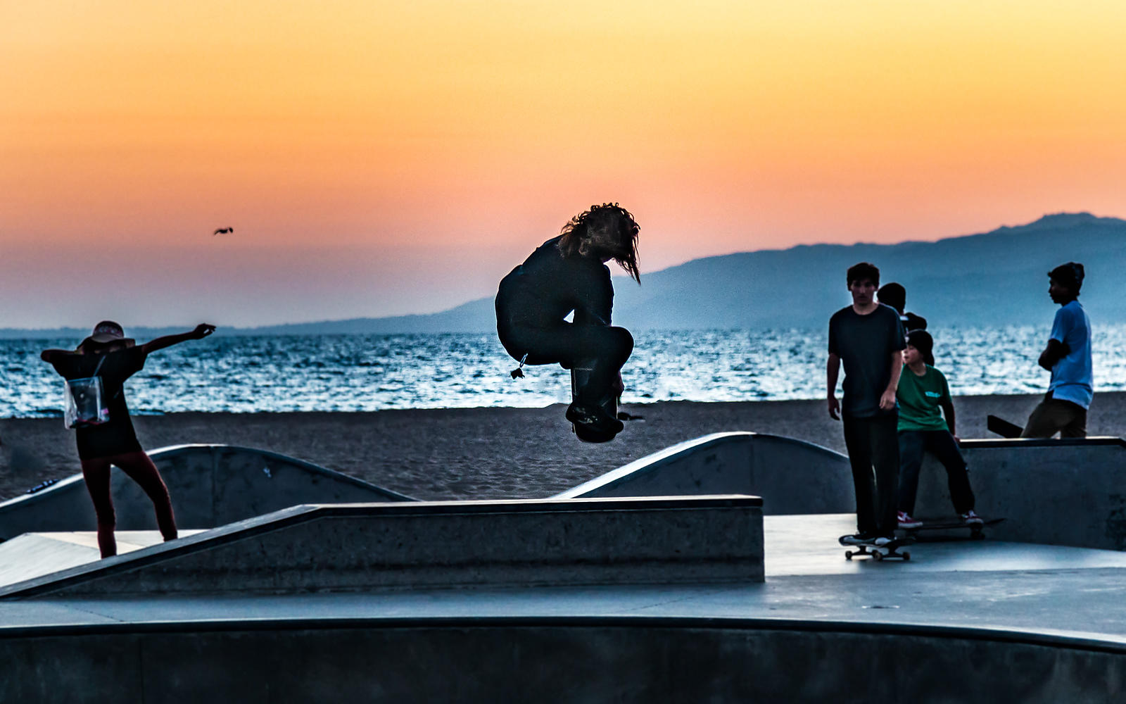 Skaters, Segull and Sunset