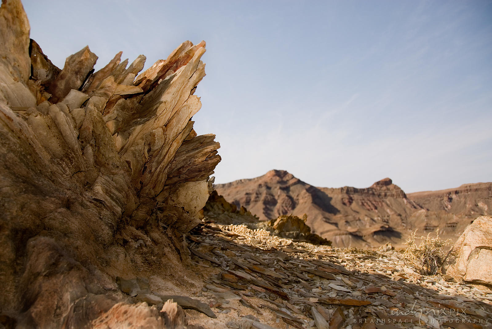 The Richtersveld is in the heart of the Succulent Karoo Biodiversity Hotspot, the only arid desert biodiversity hotspot, with over 4840 succulent plants, 40% of which are endemic.