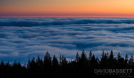 Sea of Clouds | Mt Tamalpais, CA