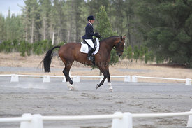 SI_Festival_of_Dressage_310115_Level_1_Champ_0666