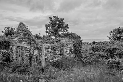 Abandoned, tumbledown cottage, The Burren, Ireland