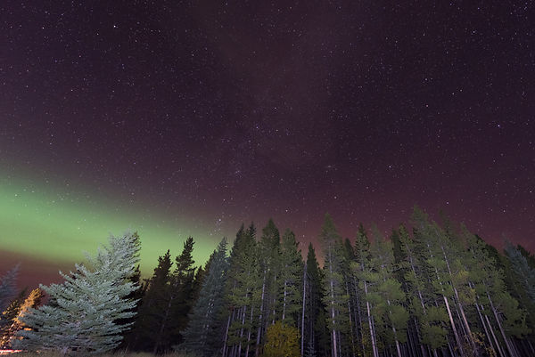 Kananaskis Northern Light Stars