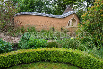 View towards Pond Garden surrounded by cob wall, topped with tiles and thatch, across box hedging, past Stipa gigantea, Cotinus coggygria 'Royal Purple' and Euphorbia mellifera. Dusky pink Nectaroscordum siculum flower against the peachy cob wall. Caervallack Farm, St Martin, Helston, Cornwall, UK