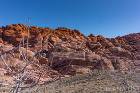 Red-Rocks-300dpi-fullsize-60