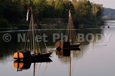 FRANCE, INDRE ET LOIRE, BREHEMONT, TOUE CABANEE//France, Indre Et Loire, Loire Valley, Bréhémont, Traditionnal Boat On The Loire River
