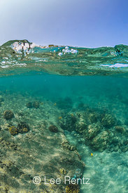 Surface and Underwater at Coral Reef off Big Island of Hawaii