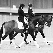 Gaynor Colbourn Dressage to Music Demo photos