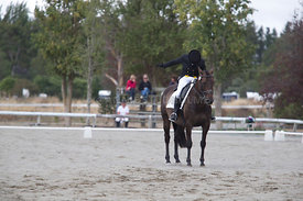SI_Festival_of_Dressage_300115_Level_6_NCF_0157