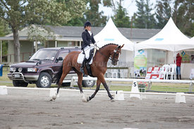 SI_Dressage_Champs_260114_036