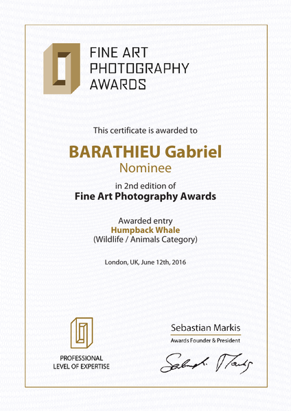 Fine Art Photography Award 2016 Fine art photography award
