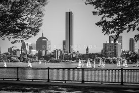 Boston Skyline Sailboats Black and White Photo