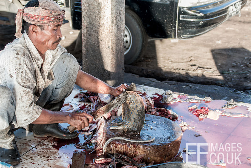 A Man Chopping Up A Blue Spotted Ray At The Fish Market