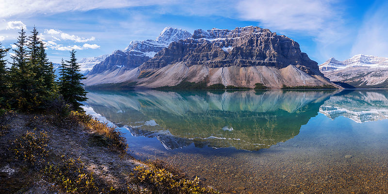 Crowfoot Reflection