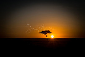 Sunrise of Masai Mara