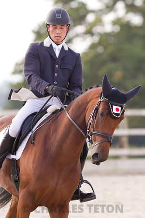 West Wilts British Dressage Small Tour on .Thursday, October 13, 2016