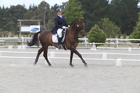 SI_Festival_of_Dressage_310115_Level_8_MFS_1099