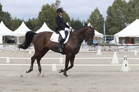 SI_Festival_of_Dressage_310115_Level_4_Champ_0594