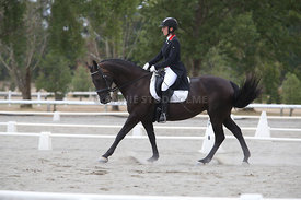 SI_Festival_of_Dressage_300115_Level_7_0285