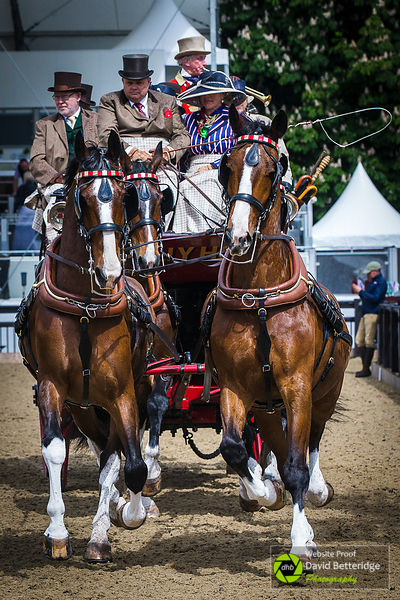 Royal_Windsor_Horse_Show_2017_011