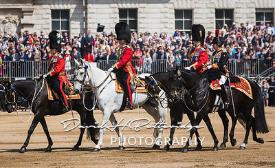Trooping_the_Colour_8724
