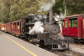 steam engine 8A at the Puffing Billy railways
