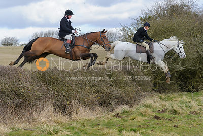 The Cottesmore Hunt at Ladywood Lodge 3/3 photos