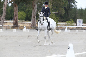 SI_Festival_of_Dressage_310115_Level_5_Champ_0818