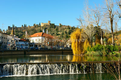 A willow tree over the Nabão river and the Templar castle on the top of the hill. Tomar, Portugal