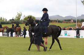 Canty_A_P_131114_Side_Saddle_1234