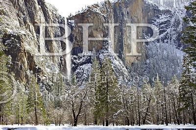 Yosemite Valley Photo