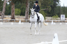 SI_Festival_of_Dressage_310115_Level_5_Champ_0817