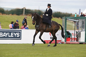 Canty_A_P_131114_Side_Saddle_1211
