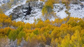 Medium Shot: White Snow, Golden Trees, & A Distant Waterfall