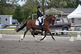 SI_Dressage_Champs_260114_038