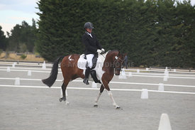 Canty_Dressage_Champs_071214_007