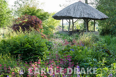 African inspired thatched hut surrounded by moisture loving plants including candelabra primulas, irises and rodgersias. Westonbury Mill Water Garden, Pembridge, Herefordshire, UK