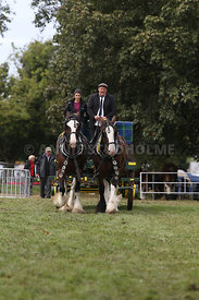 HOY_230314_clydesdales_3543