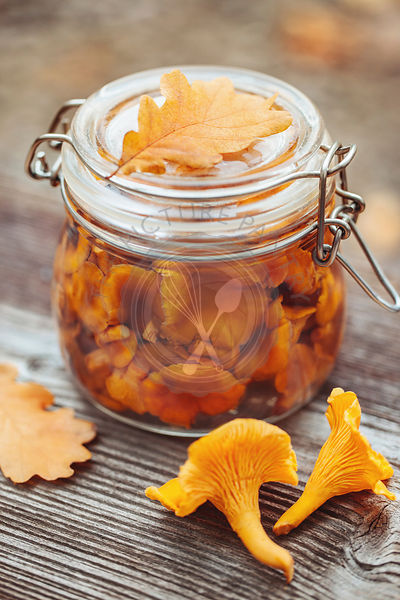 Preserved chanterelles outside