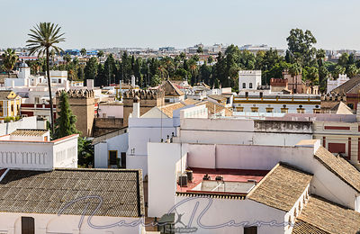 Roofs of Seville