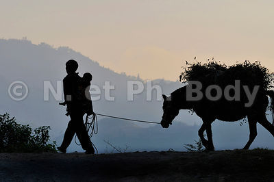 Vietnam, Bac Ha, Hmongs//Vietnam, Bac Ha, Hmongs