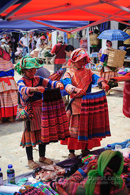 Flower Hmong Ladies at Market