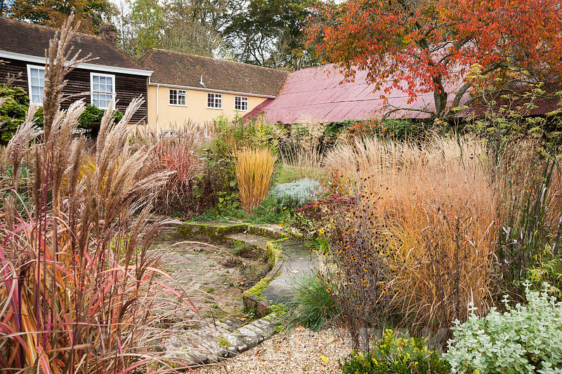 Central circular bed in the walled garden is a colourful mix of grasses, herbaceous perennials such as bronze fennel and evergreens including Ballota pseudodictamnus, against intense orange prunus foliage and red oxide corrugated barn roof. The Buildings at Broughton, near Stockbridge, Hants