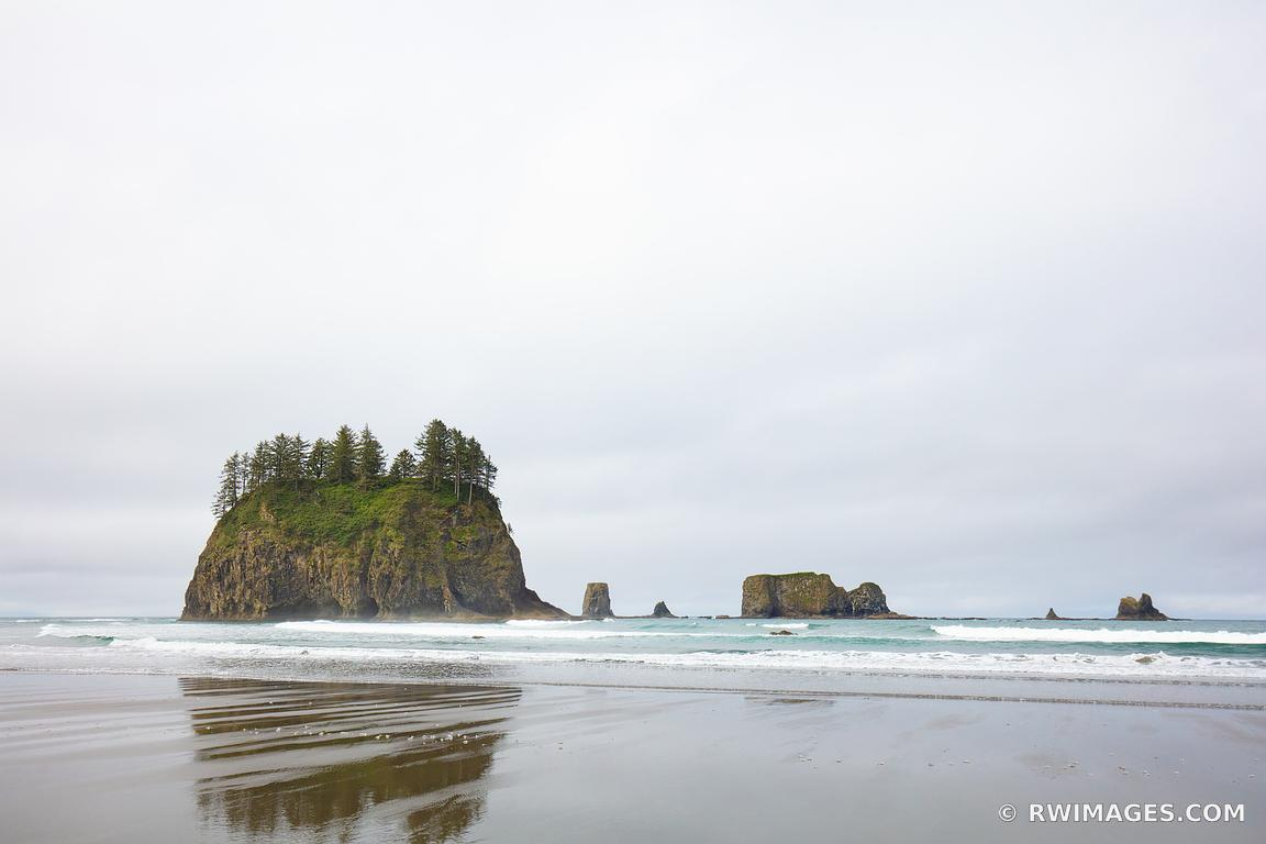 SECOND BEACH LA PUSH OLYMPIC NATIONAL PARK WASHINGTON COLOR