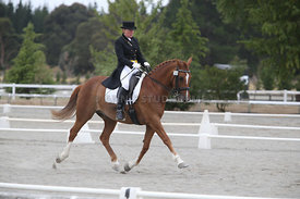 SI_Festival_of_Dressage_300115_Level_7_0266