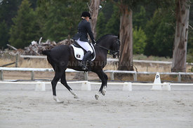 SI_Festival_of_Dressage_310115_Level_5_Champ_0811