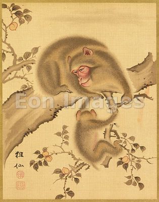 Japanese silk painting of monkeys by Mori Sosen