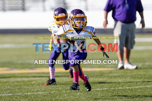 10-08-16_FB_MM_Wylie_Gold_v_Redskins-650