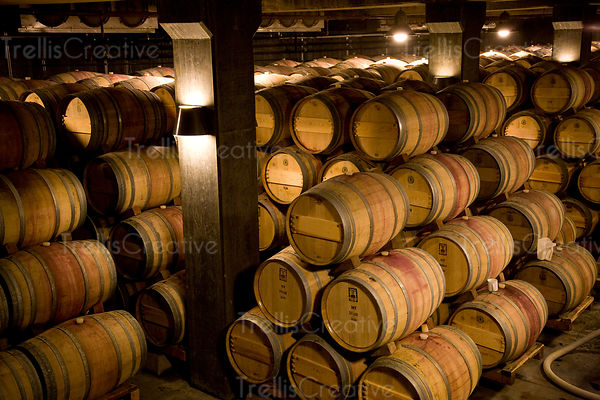 Many oak wine barrels stacked in a winery barrel cellar